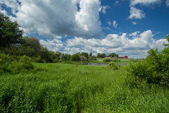 May meadow at river. Photo shot in Finland, town Vantaa Royalty Free Stock Photo