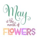 May is the month of flowers lettering. Elements for invitations, posters, greeting cards. Seasons Greetings Royalty Free Stock Photography