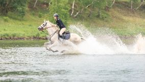 May 20, 2018. Moscow. One horsewomen force by wading the river astride horses. On a background green wood Stock Photography