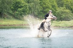 May 20, 2018. Moscow. One horsewomen force by wading the river astride horses. On a background green wood Stock Photo