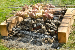 May a picnic in the country. Cooking meat on skewers over the coals Stock Photo