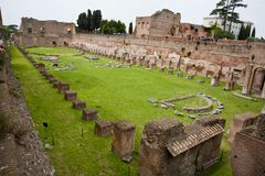 Family gardens at colosseum royalty free stock image
