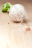 May turnip root on board Royalty Free Stock Image