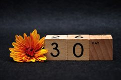 30 May on wooden blocks with am orange daisy. On a black background royalty free stock photography