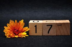 17 May on wooden blocks with an orange daisy. On a black background stock photo