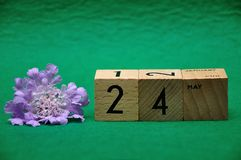 24 May on wooden blocks with a purple flower. On a green background royalty free stock images