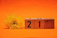 21 May on wooden blocks with a yellow daisy. On an orange background stock images