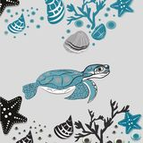 May 23 - World Turtle Day. Undrewater clipart , seashells and plants Royalty Free Stock Photos
