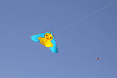 On May 11, 2014, xi 'an tang palace ruins park in China, there are a rhubarb duck shape on the sky of the kite. Stock Photo