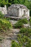 maya Μεξικό ναός yucatan Στοκ εικόνα με δικαίωμα ελεύθερης χρήσης