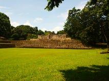 Maya archeologische plaats Quirigua royalty-vrije stock afbeeldingen
