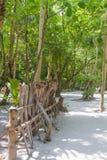 Maya bay Phi Phi Leh island, Thailand Stock Images