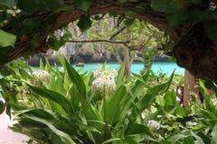 Maya bay - Thailand Royalty Free Stock Image