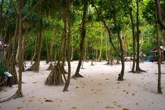 Maya Beach hidden 3 Stock Photography