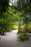 Maya Beach hidden. Entrance to the Maya Beach known from the movie: the Beach Stock Photography