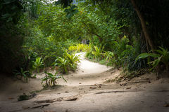Maya Beach nascosta 4 Fotografia Stock Libera da Diritti