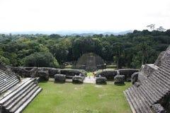 Maya bergen van caracol Royalty-vrije Stock Afbeeldingen