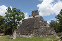 Maya building in Tikal, Guatemala. From first Maya era stock images