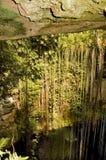 Maya cave royalty free stock photo