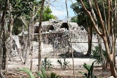 The maya city Stock Photos