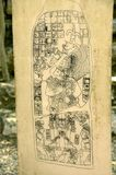 Maya glyphs stock photography