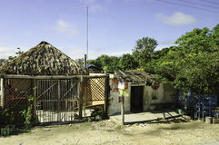 Maya houses in Yucatan Stock Photography