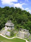 Maya maya Chiapas Mexique de ruines de Palenque Photo stock