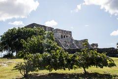 Maya Mexikos Yucatan Tulum ruiniert 3 stockfoto