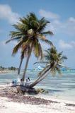 Maya Mexique de côte Images libres de droits