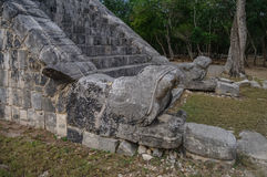 Maya Pyramid, Chichen-Itza. Mexico Royalty Free Stock Photography