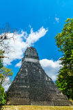 Maya pyramid in the rainforest by Tikal royalty free stock images
