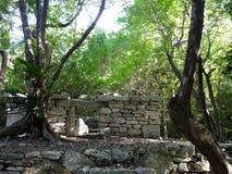Maya pyramid temple ruins in Yucatan, Mexico. Maya pyramid temple ruins in Yucatan in Mexico stock images
