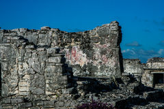 Maya ruins, Tulum, Yucatan, Mexico Royalty Free Stock Photos