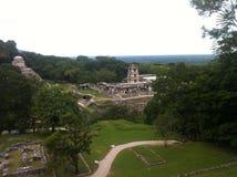 Maya Ruins di Palenque, Messico del sud Immagini Stock Libere da Diritti