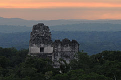 Maya ruins at Tikal. A sunrise view of the tops of two ancient Maya temples at Tikal, Guatemala Royalty Free Stock Images