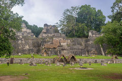 Maya ruins of Tikal, near Flores, Guatemala Stock Images