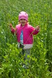Maya in rye field Stock Image