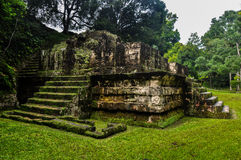 Maya's Tikal Ruins, Guatemala Royalty Free Stock Image