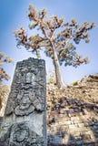 Maya Statue at Copan Royalty Free Stock Photos