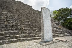 Maya stelae at Calakmul Mexico. Maya stelae at the Calakmul archaeological site Mexico stock image