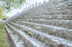 Maya structure shallow DOF Royalty Free Stock Images
