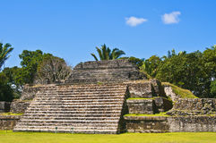 Maya Temple, Altun Ha, Belize royalty free stock images