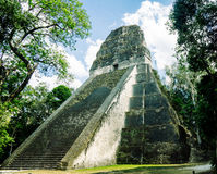 Maya temple in Tikal national park in Guatemala royalty free stock image