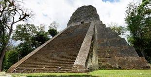 Maya Temple V dans Tikal Images libres de droits