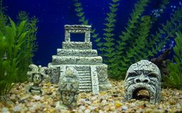 Maya vestiges in fish tank. Maya small scale vestiges in fish tank royalty free stock photos