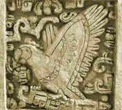 Mayakunstvogel Stockfotos