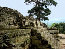 Mayan architecture and copan ruins in Honduras royalty free stock photos