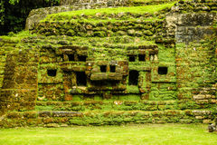 Mayan Architectuur Stock Afbeelding