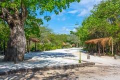 Mayan Camp Royalty Free Stock Photos