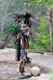 Mayan dansare och krigare Arkivbild